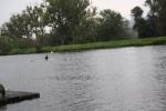 RCB_Regatta-Wetter_2009_094