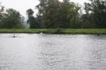 RCB_Regatta-Wetter_2009_133