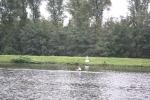 RCB_Regatta-Wetter_2009_151